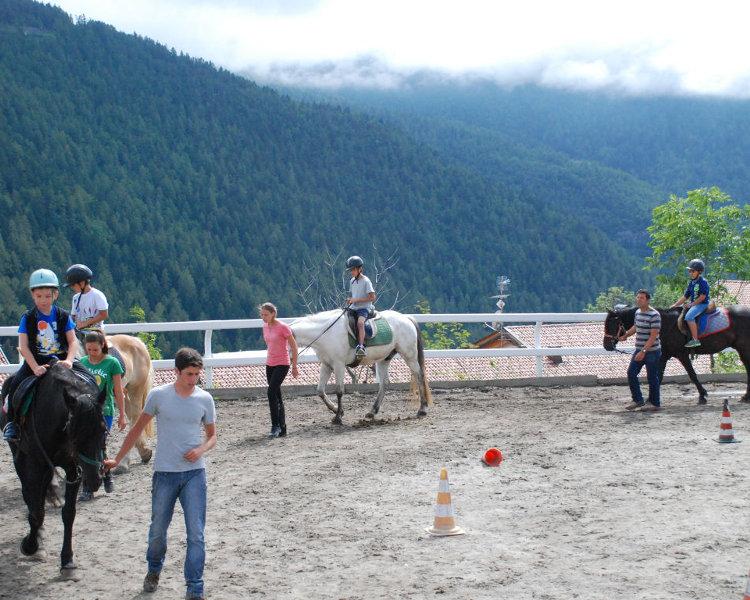 Cavalli3