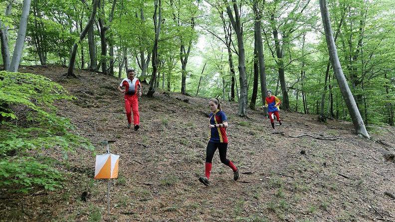 orienteering-bosco